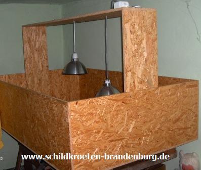 kosten schildkroeten brandenburg haltung beratung hilfe auch andere reptilien. Black Bedroom Furniture Sets. Home Design Ideas